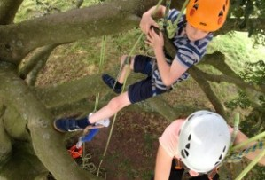 When was the last time you climbed a tree for fun?       You can this month at Ally Pally park, 3-31 May www.alexandrapalace.com